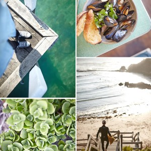Client Work - Mornington Peninsula Regional Tourism