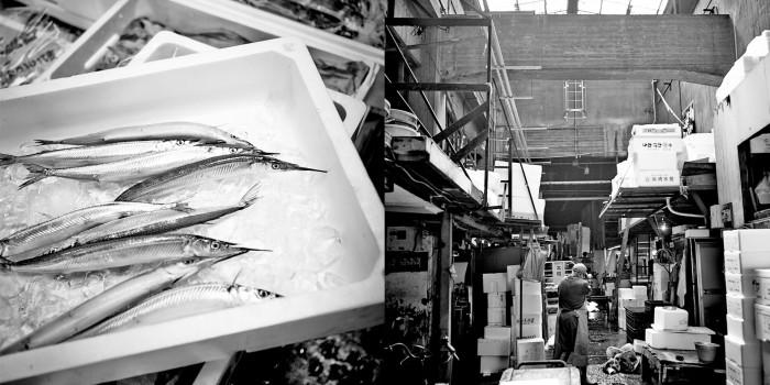 Tsukiji Market_5