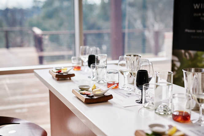 Accor-Hotels---Barossa-Valley_Jacobs-Creek-Winery---4125